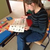 Hoe leren we Ella lezen, schrijven en rekenen?
