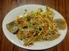 Spicy gurami, Bogor