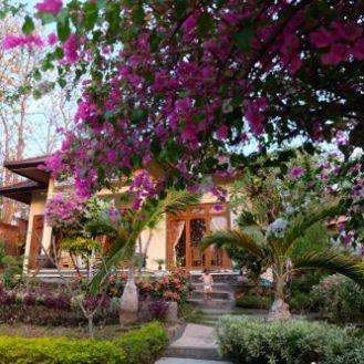 Airbnb in Buleleng, Bali