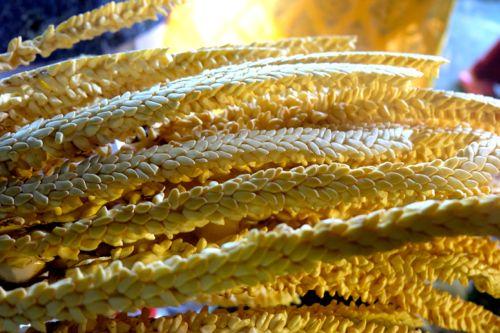 Palmsuiker, van de cocosnootboom