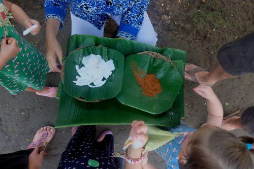 Verse kokos met palmsuiker.