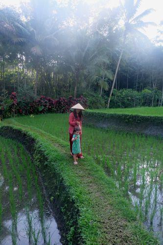 Kalibaru, Java