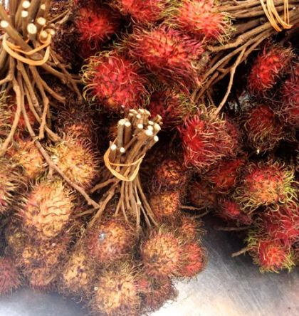 Rambutan, the hairy fruit