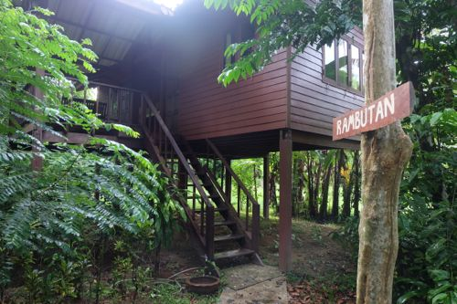 And our second night, in Rambutan bungalow