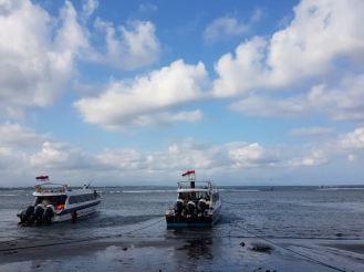 boat - 36